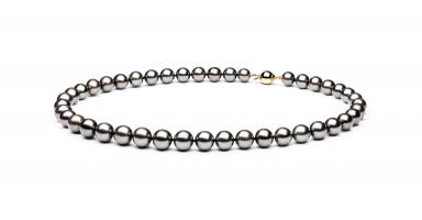 Necklace TRB77105